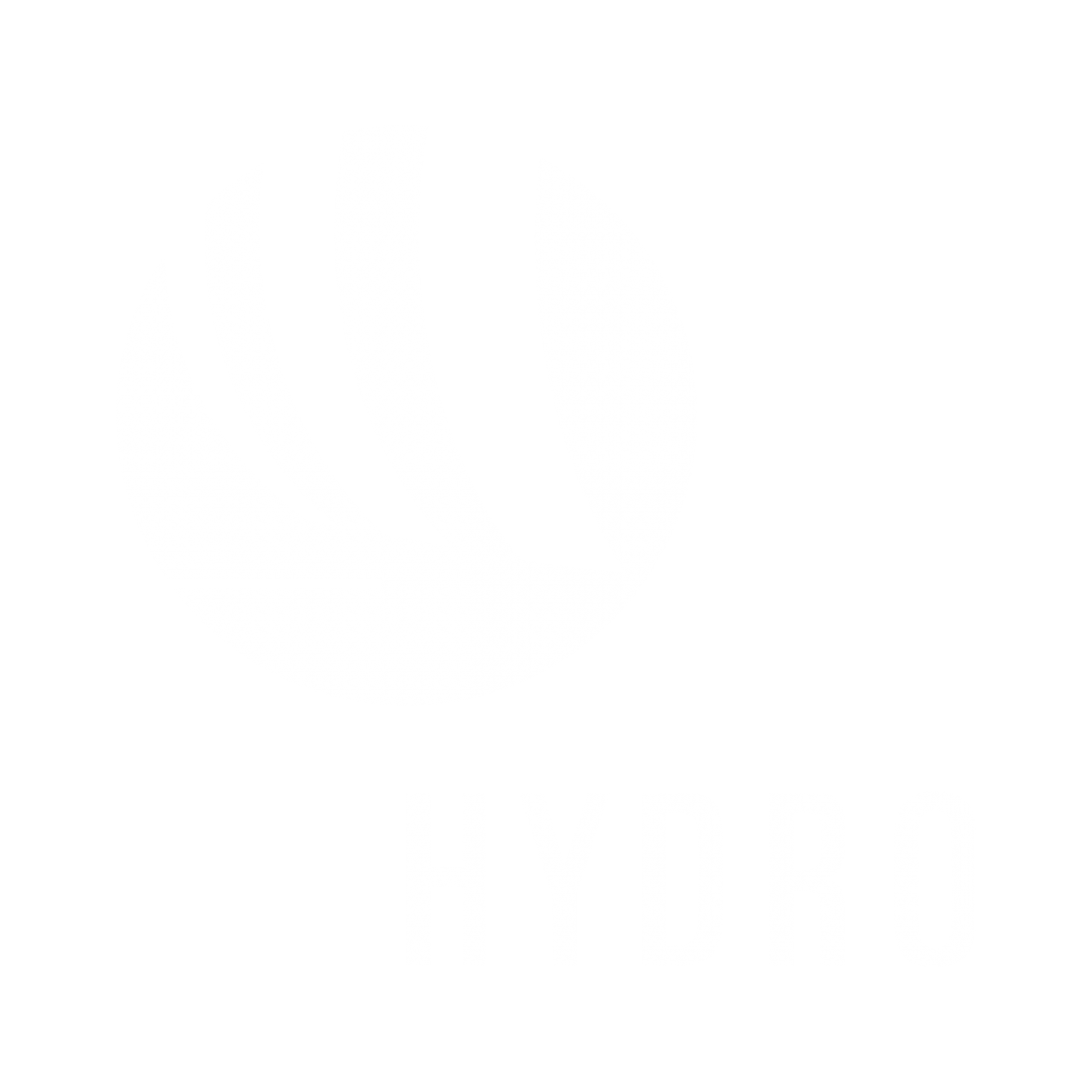 Hydro logotype in white